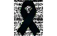 En memoria de los fallecidos por COVID-19